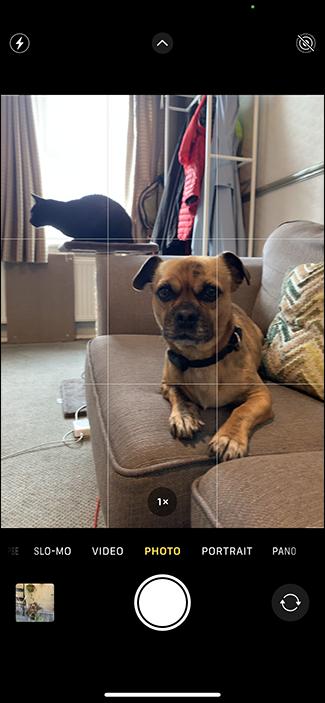 التقط صورًا على iPhone