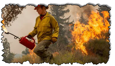 صورة في حريق الولايات المتحدة المدمر ، حث الخبراء على إعادة التفكير في أنباء مكافحة الحرائق في الولايات المتحدة وكندا