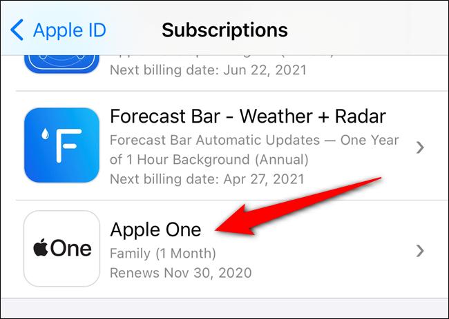 حدد اشتراك Apple One الخاص بك من القائمة