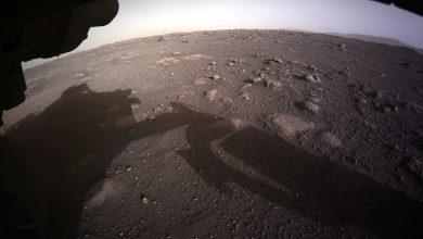 صورة ناسا تعرض مقطع فيديو مثيرًا للهبوط على المريخ ، وتنشر صورًا   أخبار التكنولوجيا