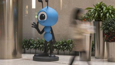 صورة استقالة سيمون هو الرئيس التنفيذي لشركة Ant Team أخبار الأعمال والاقتصاد