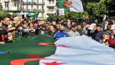 صورة من المقرر أن يجري الرئيس الجزائري انتخابات تشريعية مبكرة يوم 12 يونيو | أخبار الانتخابات