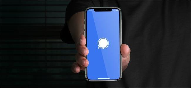 شاشة بدء تطبيق Signal على iPhone.