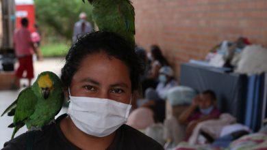 صورة هجوم فنزويلا يجلب الآلاف من المدنيين إلى كولومبيا أمريكا اللاتينية أخبار