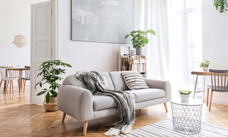 A brightly lit living room decorated with modern furniture and plants.