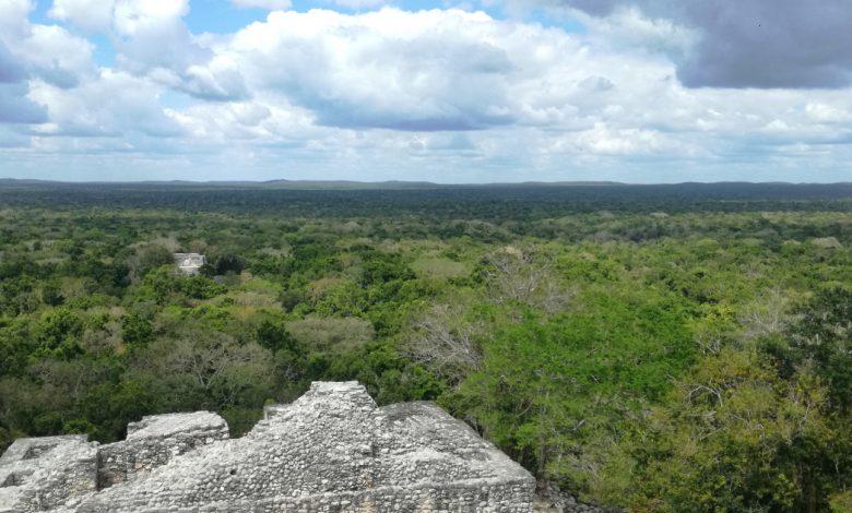تعليق قطار المايا في المكسيك يقسم مجتمعات السكان الأصليين أندريس مانويل لوبيز أوبرادور نيوز