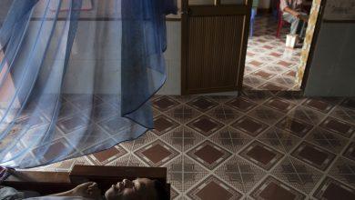 صورة محكمة فرنسية ترفض عميلاً سرياً بارزاً أنباء عن نزاع قضائي برتقالي