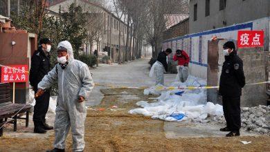 صورة الصين تعلن عن أول حالة إصابة بشرية بإنفلونزا الطيور H10N3 | أخبار الصحة