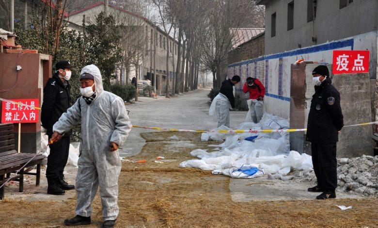 الصين تعلن عن أول حالة إصابة بشرية بإنفلونزا الطيور H10N3 | أخبار الصحة