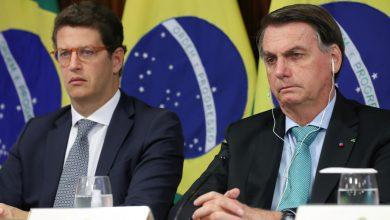 صورة قاض برازيلي يبطل جواز سفر وزير البيئة السابق في التحقيق