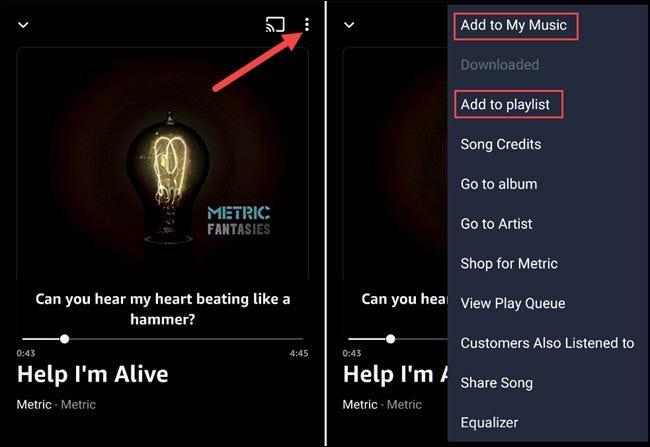 حفظ الأغنية أو إضافة إلى قائمة التشغيل