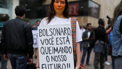 صورة البرازيل تصدر حظرا على الحرائق ، وتعيد نشر قواتها للتعامل مع حريق الأمازون   أخبار المناخ