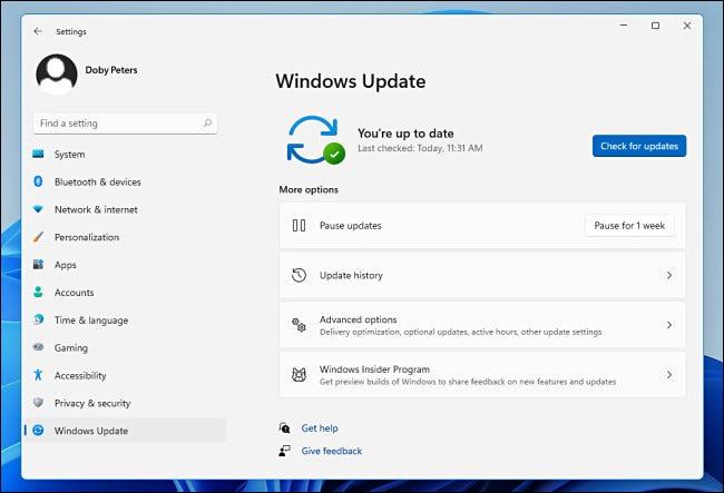 تحديث Windows في إعدادات Windows 11.